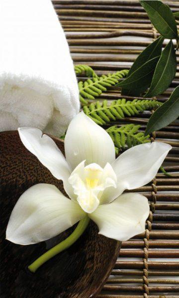 fototapete-1099-wellness-orchidee-150x250cm-einzel